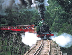 Puffing Billy - Attractions Sydney