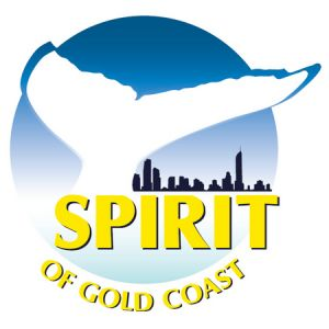 Spirit of Gold Coast Whale Watching - Attractions Sydney