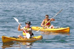 Manly Kayaks - Attractions Sydney