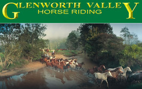 Glenworth Valley Horseriding - Attractions Sydney