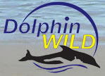 Dolphin Wild - Attractions Sydney