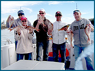 Odyssey Charters - Attractions Sydney