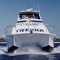Sunshine Coast Fishing Charters - Attractions Sydney