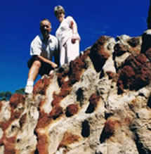 Mystery Craters - Attractions Sydney