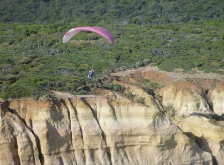 Airsports Adventure Flights - Attractions Sydney
