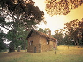 Heysen - The Cedars - Attractions Sydney