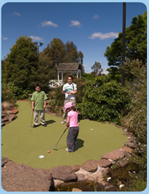 Wetlands Mini Golf - Attractions Sydney