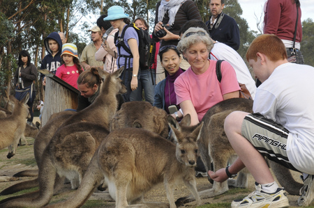East Coast Natureworld - Attractions Sydney