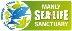 Manly SEA LIFE Sanctuary - Attractions Sydney