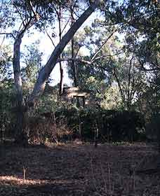 Ghost House Walk Trail Yanchep National Park - Attractions Sydney