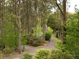 Mount Lofty Botanic Garden - Attractions Sydney