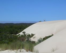 Yeagerup Sand Dunes - Attractions Sydney