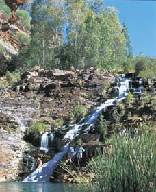 Fortescue Falls - Attractions Sydney