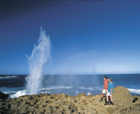 The Blowholes Carnarvon - Attractions Sydney