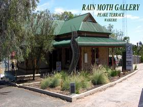 Rain Moth Gallery - Attractions Sydney