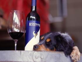 Koonara Wines - Attractions Sydney
