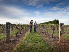 Coonawarra Wineries Walking Trail - Attractions Sydney