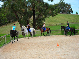 Megan Jones Riding School and Trail Rides - Attractions Sydney