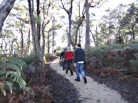 Bridport Walking Track - Attractions Sydney