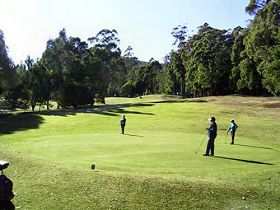 Sheffield Golf Course - Attractions Sydney