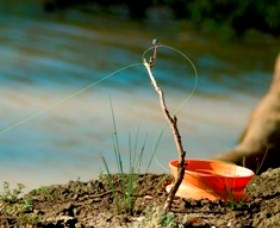 Charleville - Mangalore Warrego River Fishing Spot - Attractions Sydney