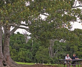 Ravensbourne National Park - Attractions Sydney