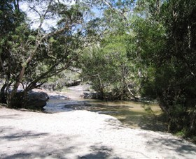 Davies Creek National Park and Dinden National Park - Attractions Sydney