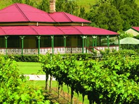 OReillys Canungra Valley Vineyards - Attractions Sydney