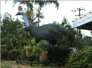 The Big Cassowary - Attractions Sydney