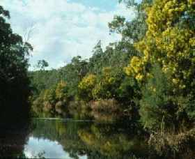 Warrandyte State Park - Attractions Sydney