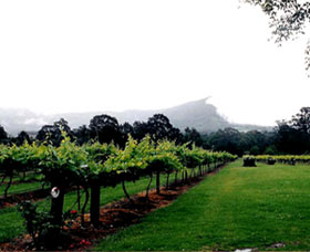 Cambewarra Estate Wines - Attractions Sydney