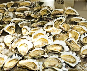 Wheelers Oysters - Attractions Sydney