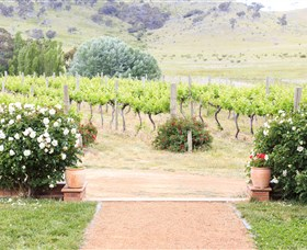 Brindabella Hills Winery - Attractions Sydney