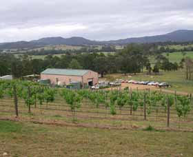 Villa d Esta Vineyard - Attractions Sydney