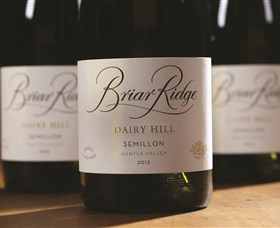 Briar Ridge Vineyard - Attractions Sydney