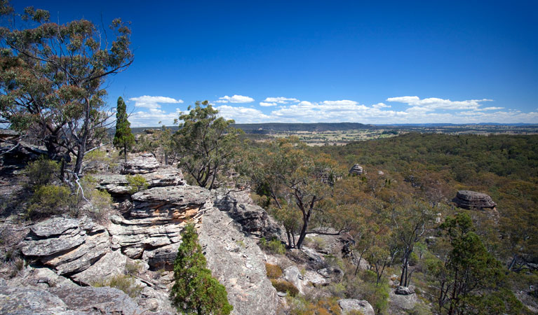 Munghorn Gap Nature Reserve - Attractions Sydney
