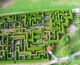 Hedgend Maze and Healesville Laser Sport - Attractions Sydney