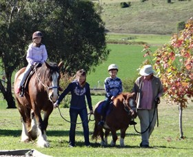 Bathurst Farm Experience - Attractions Sydney