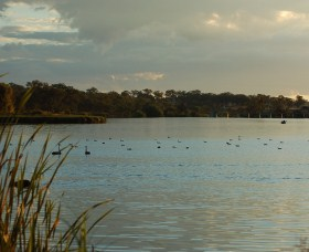Lake Inverell Reserve - Attractions Sydney