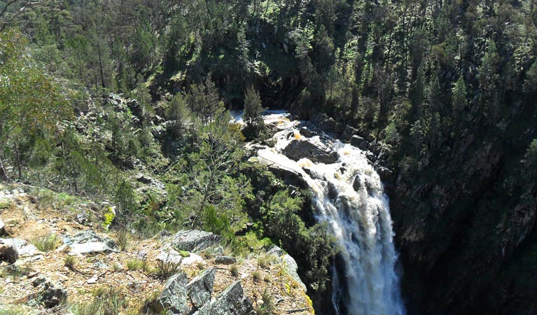 Grove Creek Falls walking track - Attractions Sydney