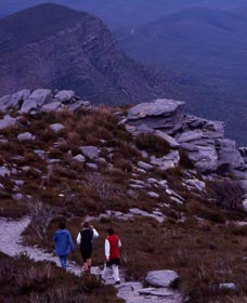Bluff Knoll Stirling Range National Park - Attractions Sydney