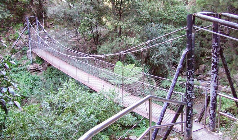 Jenolan River walking track - Attractions Sydney
