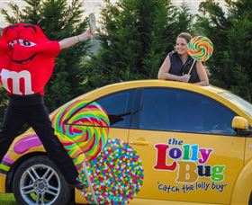 The Lolly Bug - Attractions Sydney