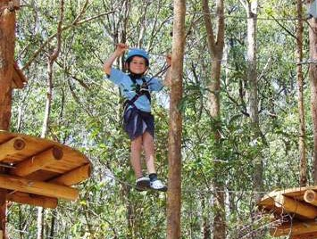 TreeTops Newcastle - Attractions Sydney