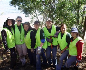 Conservation Volunteers Australia - Sydney - Attractions Sydney