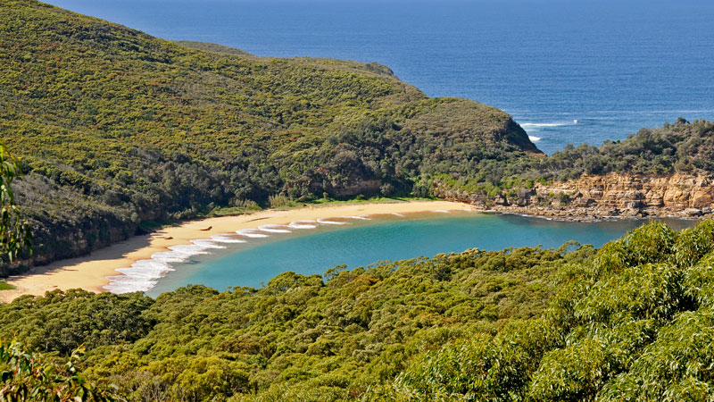 Bouddi National Park - Attractions Sydney