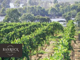 Banrock Station Wine And Wetland Centre - Attractions Sydney