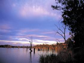 Loch Luna Game Reserve and Moorook Game Reserve - Attractions Sydney