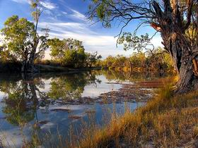Murray River National Park - Attractions Sydney