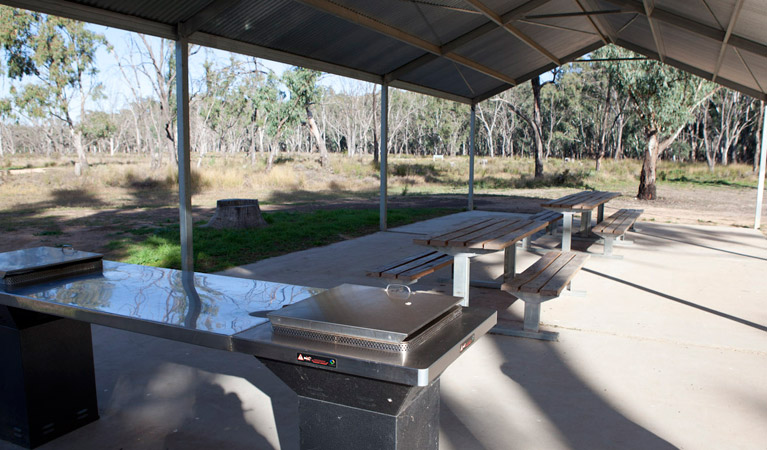 Yanga Woolshed picnic area - Attractions Sydney